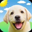 狗语翻译器app v1.0.6安卓版