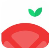 番茄空间app安卓版 v1.0.6